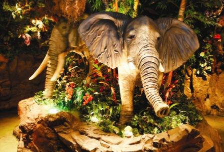Rainforest Cafe for Children