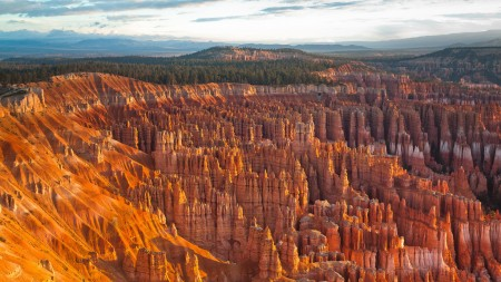Bryce Canyon by Flickr user King....