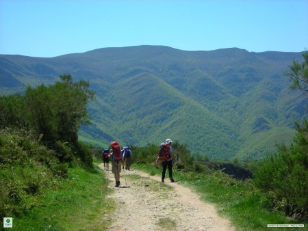 Essential Tips for Walking the Camino
