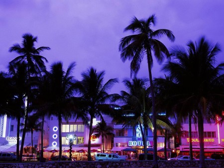 Miami Music - Music Lovers Guide