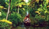 Top Things To Do During KERALA Tour