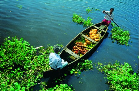 Locals at Kottayam Backwaters