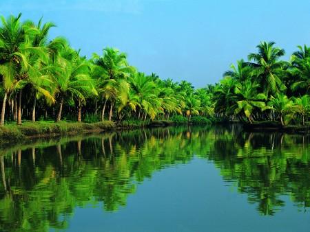 Kerala Sightseeing