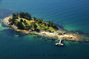 Shark island Sydney