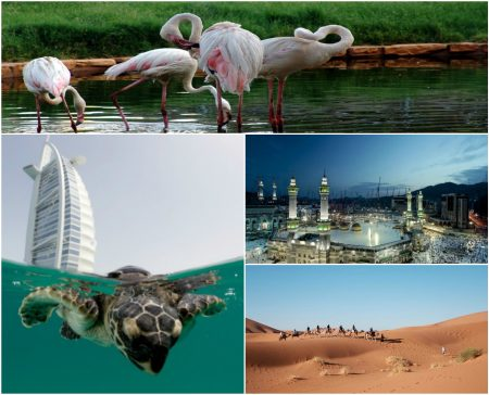 Tourist attractions in Saudi Arabia